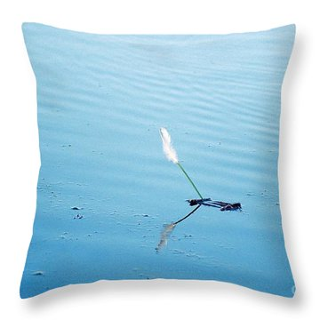 Flying Feather Boat Throw Pillow