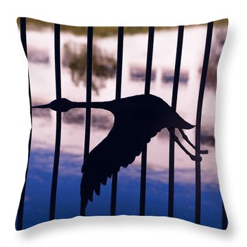 Flying Fence Throw Pillow