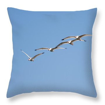 Throw Pillow featuring the photograph Flying Formation by John M Bailey