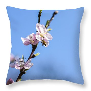 Throw Pillow featuring the photograph Flying High by Amber Kresge