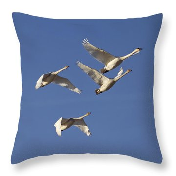 Flying High Throw Pillow by Elvira Butler