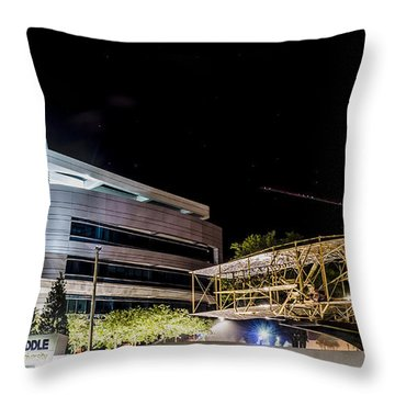 Flying Into A New Century Throw Pillow