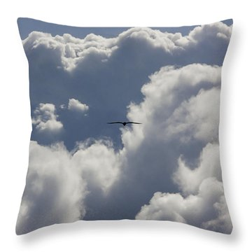 Flying Into The Storm Throw Pillow