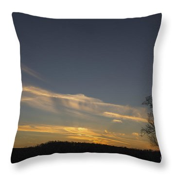 Flying Into The Yellow Sunset Throw Pillow