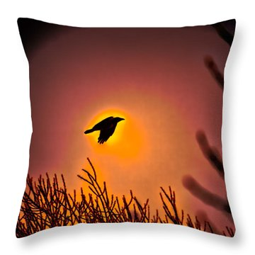 Flying - Leif Sohlman Throw Pillow by Leif Sohlman