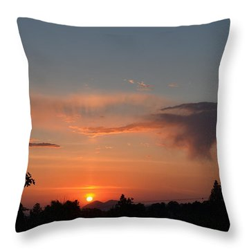 Flying Rabbit Throw Pillow