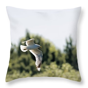 Throw Pillow featuring the photograph Flying Seagull by Leif Sohlman