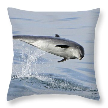 Flying Sideways Throw Pillow
