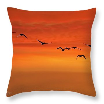 Throw Pillow featuring the photograph Flying South  by Cindy Greenstein
