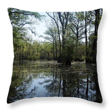 Flying Through The Mirror Throw Pillow