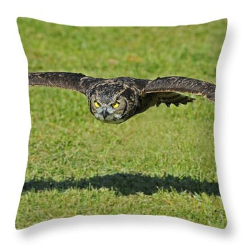 Flying Tiger... Throw Pillow
