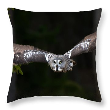 Focus On The Target Throw Pillow by Torbjorn Swenelius