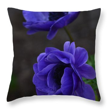 Focused Throw Pillow by Debby Pueschel