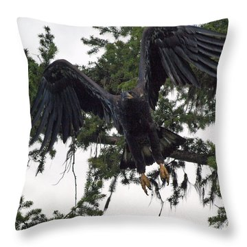 Focused On Prey Throw Pillow