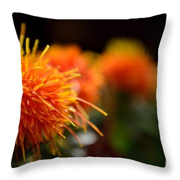 Focused Safflower Throw Pillow by Scott Lyons