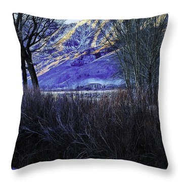 Fog And Ice Throw Pillow