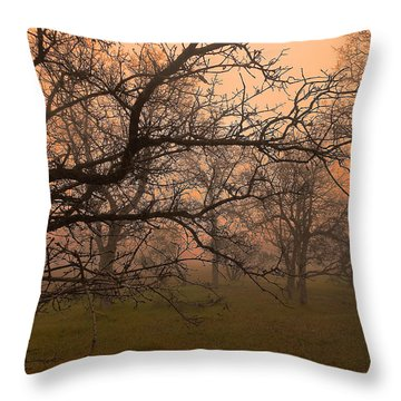 Fog And Sunrise 1 Throw Pillow by John Norman Stewart