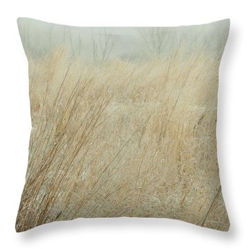 Fog-frost Throw Pillow by Tim Good