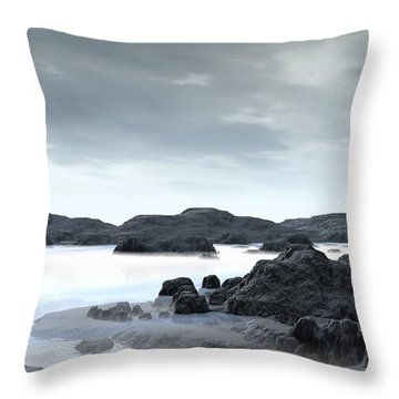 Fog Throw Pillow by John Pangia
