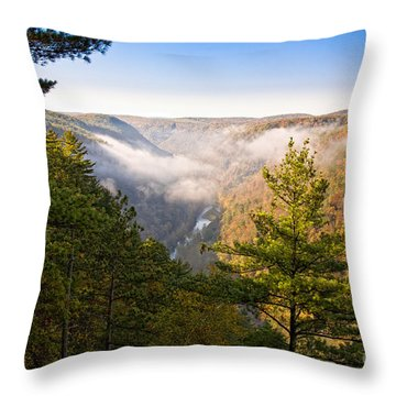 Fog Over The Canyon Throw Pillow