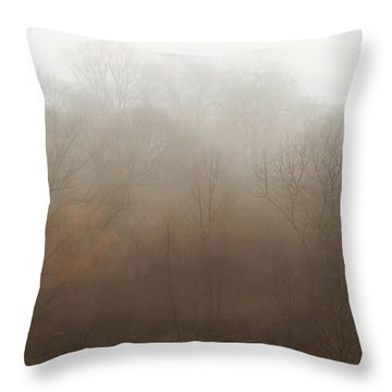 Fog Riverside Park Throw Pillow