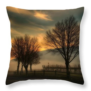 Foggy And Dreamy Throw Pillow