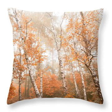 Foggy Autumn Aspens Throw Pillow