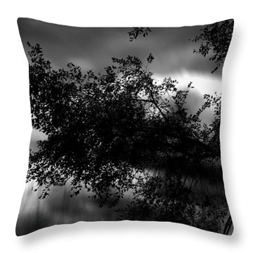 Foggy Autumn Morning On The River Throw Pillow