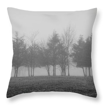 Foggy Day Throw Pillow