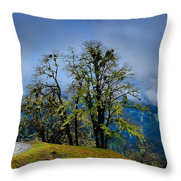 Foggy Day Throw Pillow by Donald Fink