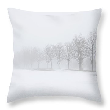 Foggy Day With Snow Throw Pillow by Donna Doherty
