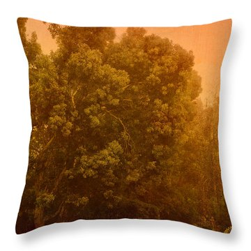 Foggy Drizzly City Morning Throw Pillow by Angela A Stanton