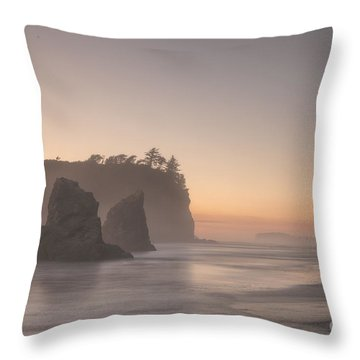 Foggy Evening Throw Pillow