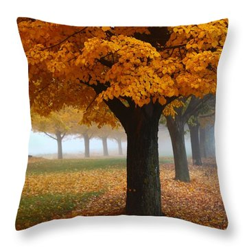 Throw Pillow featuring the photograph Foggy Fall Morning by Lynn Hopwood