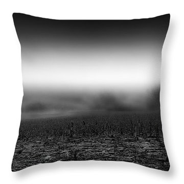 Foggy Field Throw Pillow by Tom Gort