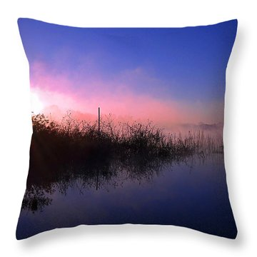 Throw Pillow featuring the photograph Foggy Lake Sears 000 by Chris Mercer