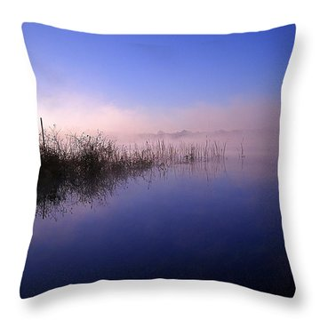 Throw Pillow featuring the photograph Foggy Lake Sears  by Chris Mercer