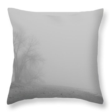 Foggy Lake Shoreline View Bw  Throw Pillow by James BO  Insogna
