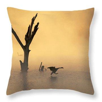 Foggy Landing Throw Pillow