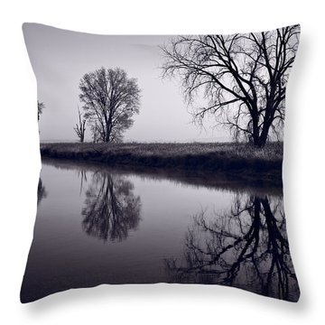 Foggy Morn Bw Throw Pillow by Steve Gadomski