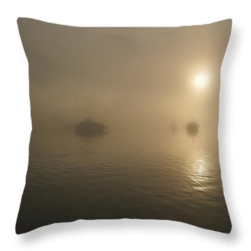 Throw Pillow featuring the photograph Foggy Morning by Mark Alan Perry