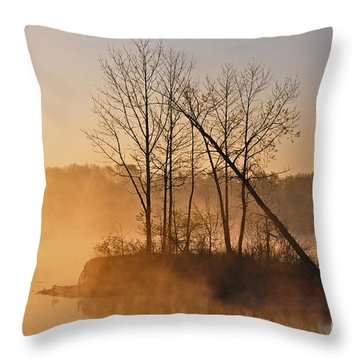 Foggy Ohio Morning Throw Pillow