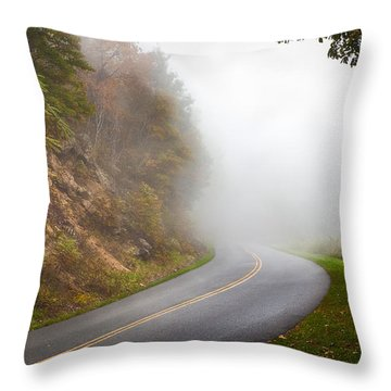 Foggy Parkway Throw Pillow by David Cote