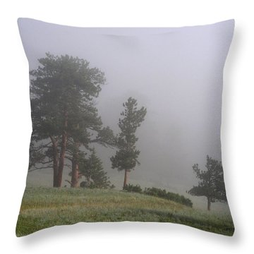 Throw Pillow featuring the photograph Foggy Pines by Craig T Burgwardt