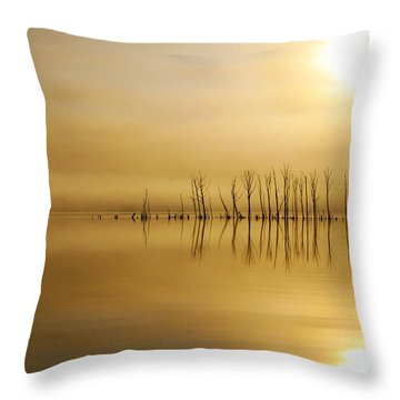 Foggy Rise Throw Pillow