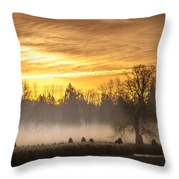 Foggy Sunrise Throw Pillow by Cassius Johnson