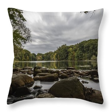 Throw Pillow featuring the photograph Foliage by Anthony Fields