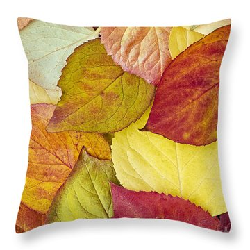 Throw Pillow featuring the photograph Foliage Quilt by Alan L Graham