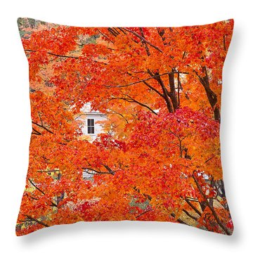 Throw Pillow featuring the photograph Foliage Window by Alan L Graham