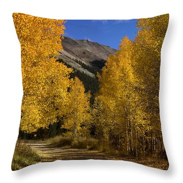 Throw Pillow featuring the photograph Follow The Gold by Ellen Heaverlo